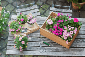 Best wood planter boxes reviews